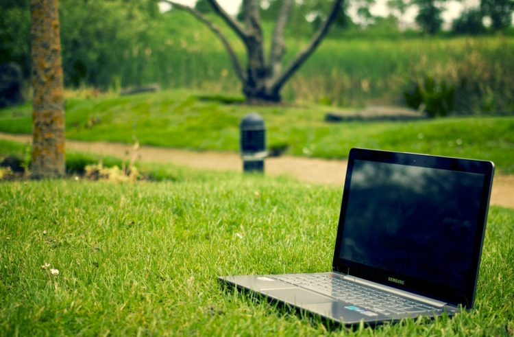 How eco-friendly is your small business website?