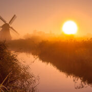 The Dutch Polder Model Explained: Why Every Employee Should Start A Side Hustle Today